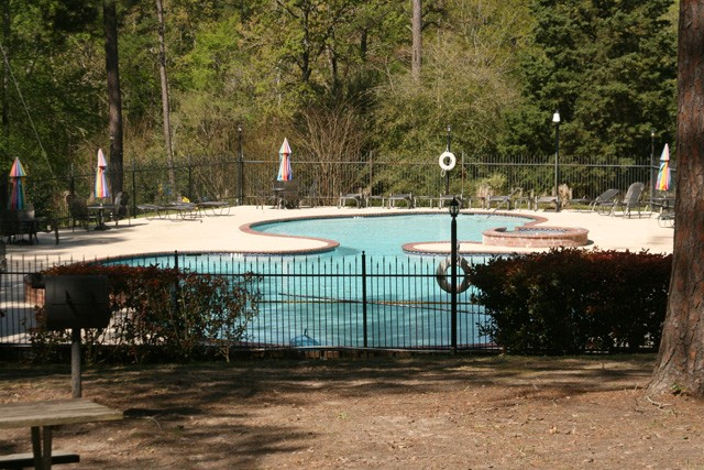 one of 3 community swimming pools at holly lake ranch.